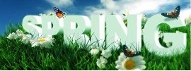 Spring Tax Calendar Deadlines Ireland and the UK